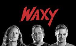 Waxy_members